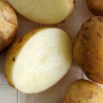 Pomme de terre de Noirmoutier : tout savoir sur cette patate !
